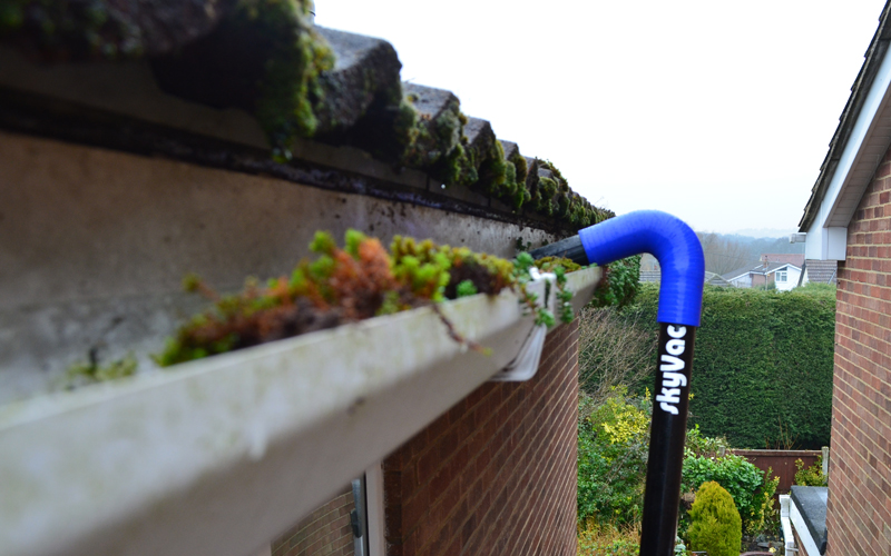 Why Regular Gutter Cleaning is so Important!